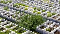 Horta Urbana (parte I)