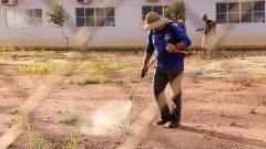 Homem fazendo aplicação de veneno em terreno. Foto: Cecília Bastos/USP Imagem