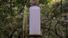 Armadilha de borboletas no bosque do Museu do Ipiranga . Local: São Paulo/SP - Foto: Cecília