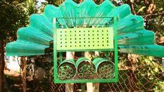 Abelhas no jardim do CESAM, da FFCLRP