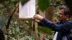 Expedição de Campo do Museu de Zoologia no bosque do Museu do Ipiranga- Foto: Cecília Bastos/USPImagem