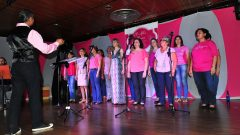 Desfile Outubro Rosa de 2015, da EERP