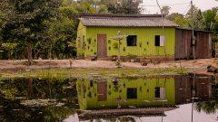 Paisagem e Casas do interior do Acre. Foto: Cecília Bastos/USP Imagem