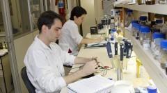Laboratório do Departamento de Alimentos e Nutrição Experimental – FCF
