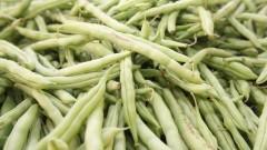 Vagem – Legumes