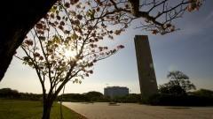 Flora – Campus da Capital