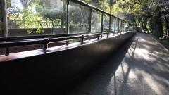 Instituto Butantan III