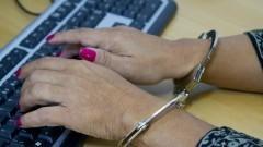 Algema – crimes cibernéticos