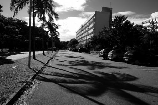 Cotidiano em preto e branco – Campus da Capital (parte I)