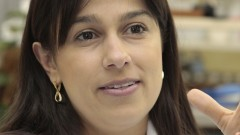 Thelma Parada – Departamento de Anatomia – ICB