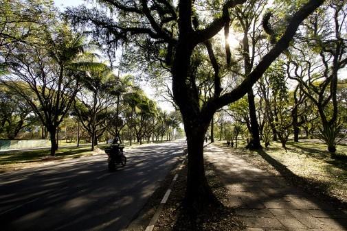 Flora VII – Campus da Capital