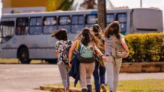 Alunos do campus de Pirassununga. Foto: Cecília Bastos/USP Imagem