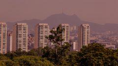 Area Verde em torno do campus Capital da USP. Foto: Cecília Bastos/USP Imagem