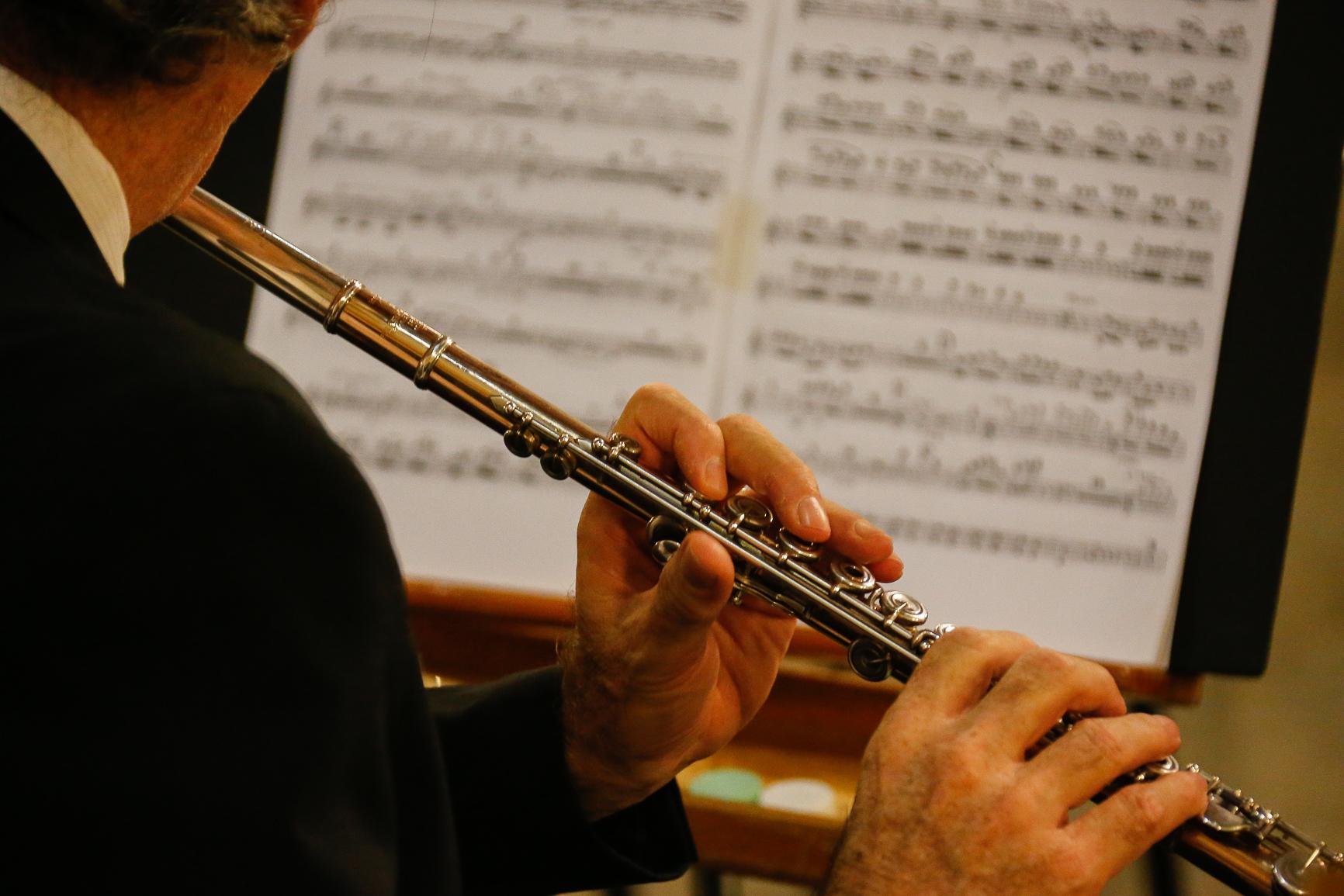 Concerto Órgão Grenzing