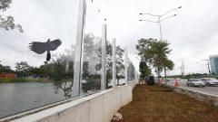 Muro da Raia Olímpica – Substituição por painéis de vidro (CEPEUSP)