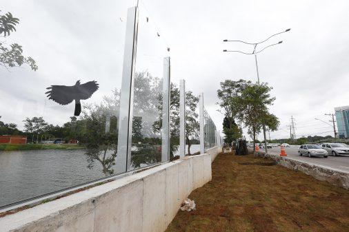 Muro da Raia Olímpica – Substituição por painéis de vidro