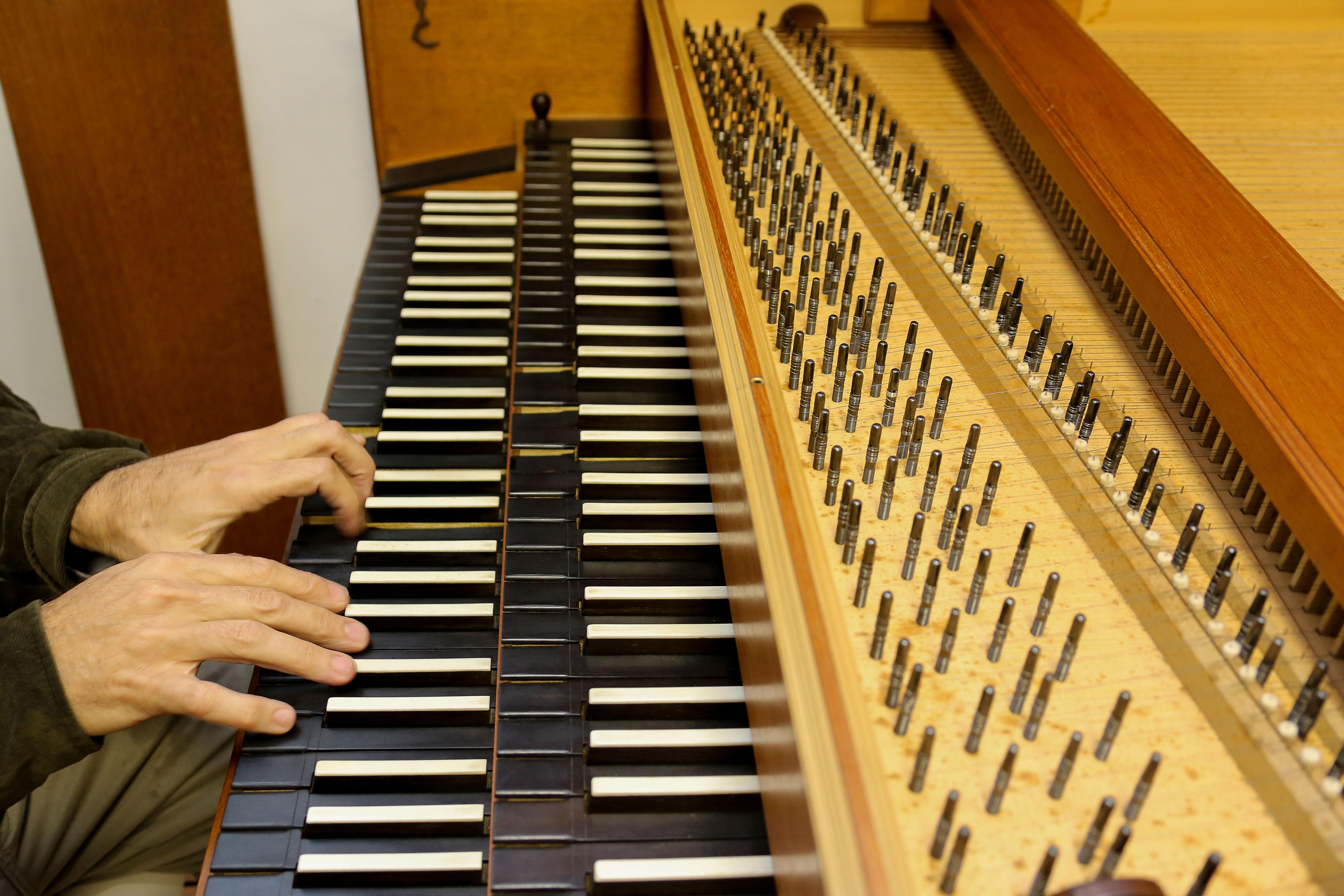 Cravos da ECA -Detalhe do cravo alemão. foto Cecília Bastos/Usp Imagem