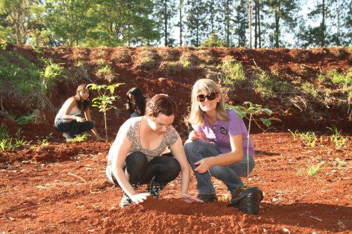 Plantio de árvores na EEFERP, 10/02/2006