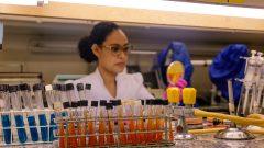 Laboratório Microbiologia