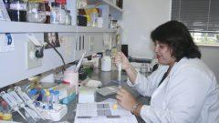 Viviane Ambrosio Trombela, técnico de laboratório da FMRP, 12/03/2009