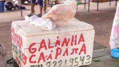 Feira livre da cidade de Monte Negro, Rondônia. Foto: Cecília