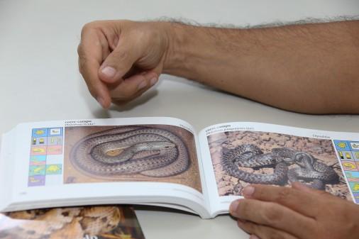 Serpentes do Cerrado – IB