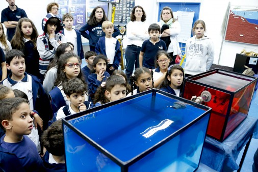 Museu do Instituto Oceanográfico – IO