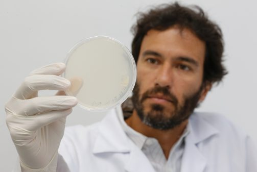 Molécula Samba – Instituto de Ciências Biomédicas