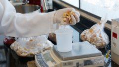 Laboratório de processamento de pães e massas do departamento de engenharia de alimentos do campus de Pirassununga. Foto: Cecília Bastos/USP Imagem