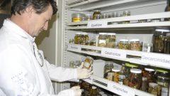 Laboratório do prof. Luis Fernando Mantelato, da FFCLRP