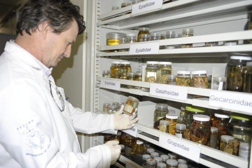 Laboratório do prof. Luis Fernando Mantelatto, da FFCLRP