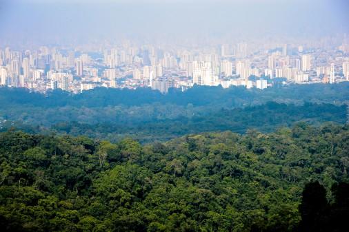 Parque Estadual da Cantareira