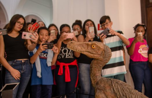 Visita de alunos ao Museu de Zoologia
