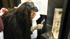 Museu de Anatomia Humana Professor Alfonso Bovero – Instituto de Ciências Biomédicas