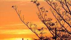 Por do sol. Foto: Cecília Bastos/USP Imagem