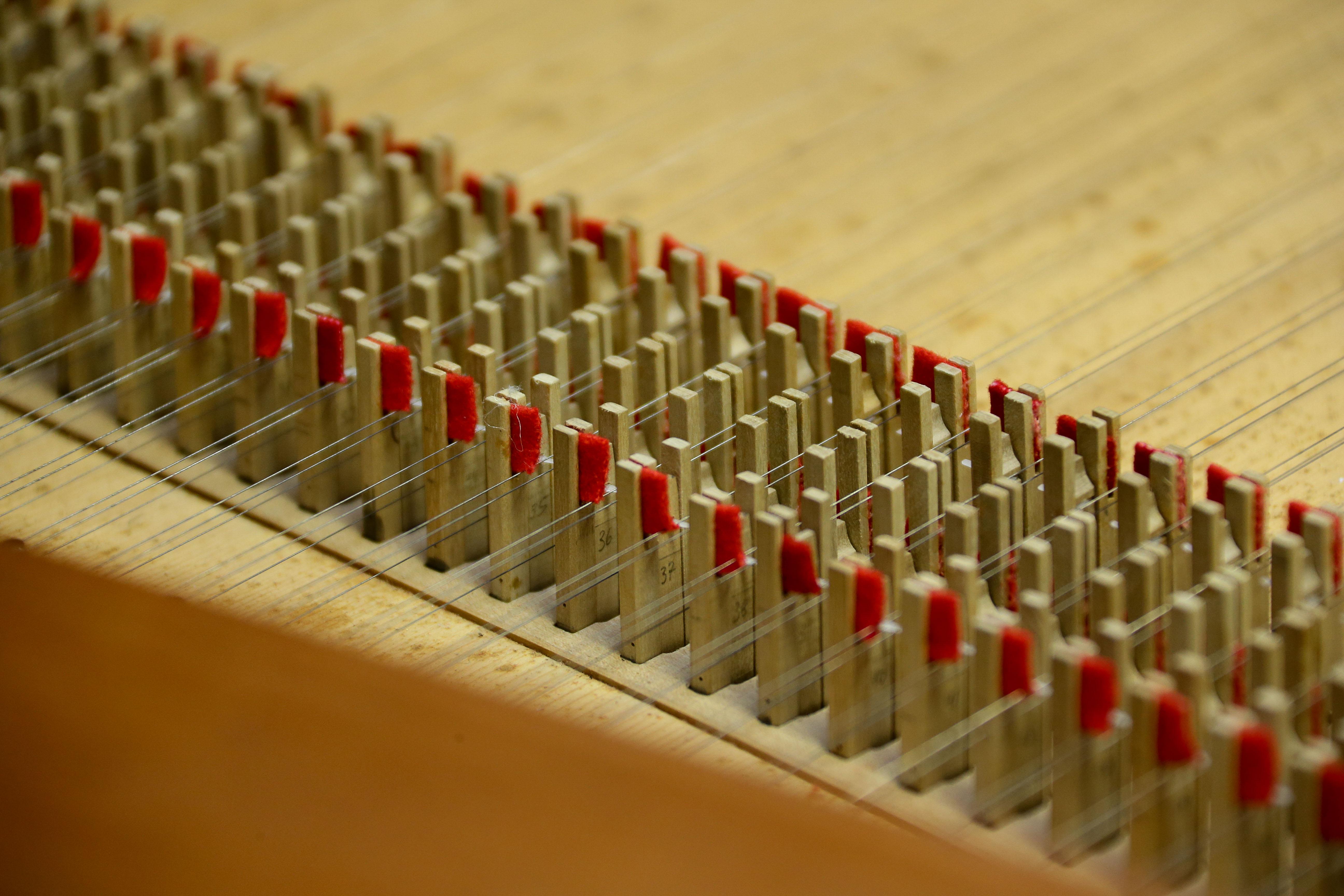 Detalhe do mecanismo saltador do cravo. foto Cecília Bastos/Usp Imagens