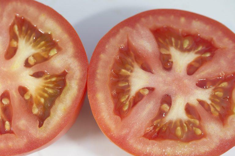 fruto, solanum lycopersicum, tomate