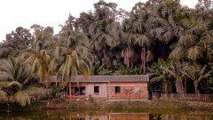 Zona rural da cidade de Mancio Lima no estado do Acre. Fotos; Cecília Bastos/USP Imagem