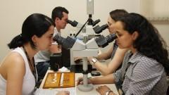 Faculdade de Odontologia VI