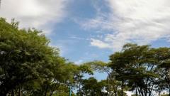 Nuvens - foto Cecília Bastos